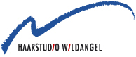 logo_haarstudio